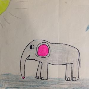 Justin Elephant